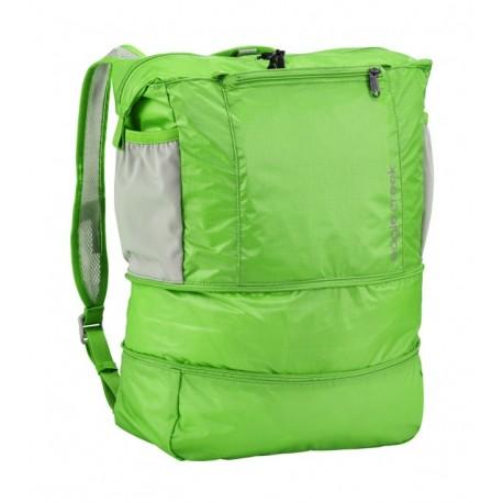 Eagle Creek Tote bagpack