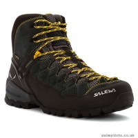 Salewa Bota MS ALP Trainer Mid GTX